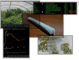 on pot stocks and etfs